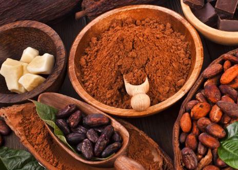 bột cacao nguyên chất ở hà nội