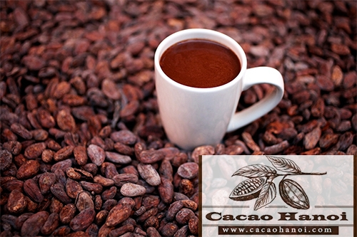 lịch sử của cacao
